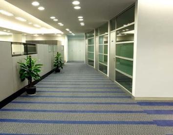 办公室大厅地毯
