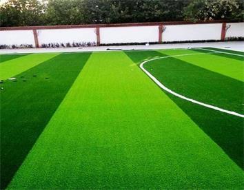 重庆操场草坪